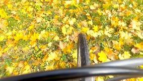 Passeio do ciclista filme
