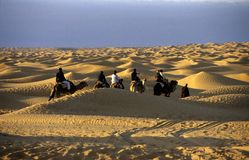 Passeio do deserto Imagens de Stock