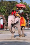 Passeio do elefante em Ásia Fotos de Stock