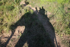 Passeio do elefante - Nepal fotografia de stock
