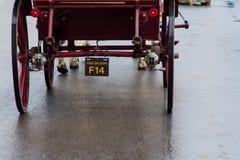 Passeio do transporte do cavalo na chuva em Salzburg, Áustria Fotos de Stock Royalty Free
