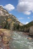 Passeio do trem de Durango Colorado Imagem de Stock Royalty Free