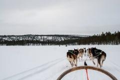 Passeio do trenó no lago congelado foto de stock
