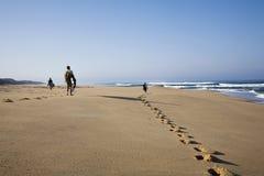 Passeio dos surfistas Fotos de Stock