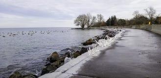 Passeio e rochas gelados na linha costeira do Lago Ontário fotos de stock royalty free