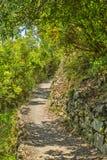 Passeio em Cinque Terre National Park fotografia de stock royalty free
