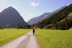 Passeio em a montanha da bicicleta de montanha Fotografia de Stock