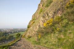 Passeio em penhascos de Salisbúria, parque de Holyrood, Edimburgo fotos de stock