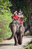 Passeio em um elefante fotografia de stock