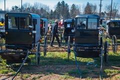 Passeio entre carrinhos de Amish na venda fotos de stock