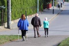 Passeio escandinavo/nórdico Uma mulher na roupa da cidade dá uma volta através da grama do ` s do verão nos raios de luz solar Es fotos de stock