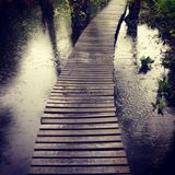 Passeio na chuva Imagem de Stock Royalty Free