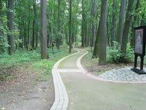 Passeio na floresta perto do castelo grande no parque de Tsaritsyno Imagens de Stock