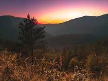 Passeio na montanha à parte superior do monte Fotografia de Stock Royalty Free
