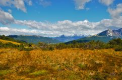 Passeio na montanha ao Guanaco de Cerro em Tierra del Fuego Fotografia de Stock Royalty Free
