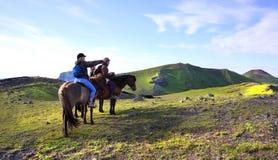 Passeio na montanha islandês do cavalo Imagens de Stock Royalty Free