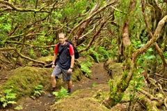Passeio na montanha na floresta selvagem em montanhas de Anaga, Tenerife Imagens de Stock Royalty Free