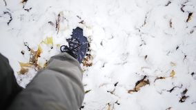 Passeio na neve video estoque