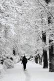 Passeio na neve após a queda de neve forte Imagens de Stock