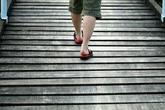 Passeio na ponte de madeira Fotografia de Stock