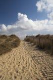 Passeio na praia de Walberswick, Suffolk, Inglaterra Fotografia de Stock