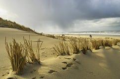 Passeio na praia em Holland fotos de stock