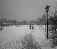 Passeio na praia no inverno Campo de jogos coberto de neve R?ssia moscow fotografia de stock