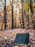 Passeio nas madeiras com as folhas de outono coloridas fotografia de stock royalty free