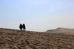 Passeio no deserto Fotos de Stock