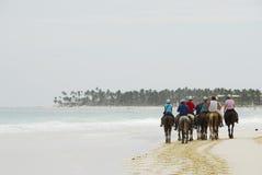 Passeio no horseback em uma praia tropical Imagens de Stock Royalty Free