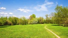 Passeio no parque do verão Imagem de Stock Royalty Free