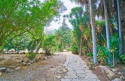 Passeio obscuro no jardim inglês do palácio de Manial, o Cairo, Egito Fotografia de Stock Royalty Free
