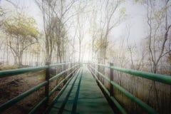 Passeio ou ponte longa na névoa branca a iluminar-se na extremidade, concep Foto de Stock