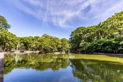 Passeio Publico公园 库里奇巴,巴拉那州的巴西 库存照片