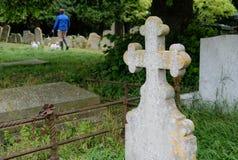 Passeio visto pessoa um par cães pequenos através do cemitério velho durante o verão fotografia de stock