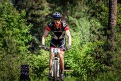 Passeios do ciclista através da floresta Imagem de Stock Royalty Free