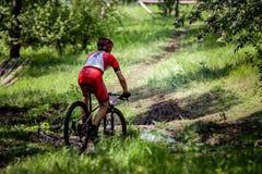 Passeios do ciclista através da floresta Imagem de Stock