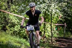 Passeios do ciclista através da floresta Fotografia de Stock