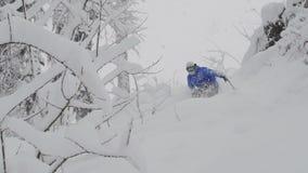 Passeios freerider do Snowboarder na floresta vídeos de arquivo
