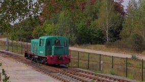Passeios locomotivos pelo trilho Lugar locomotivos em Forest Railway video estoque