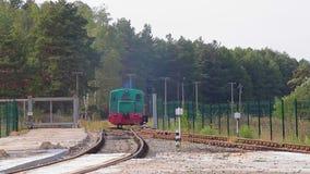 Passeios locomotivos verdes pelo trilho Lugar locomotivos em Forest Railway video estoque