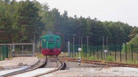 Passeios locomotivos verdes pelo trilho Lugar locomotivos em Forest Railway vídeos de arquivo
