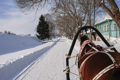 Passeios tirados cavalos do trenó de Clydesdale no inverno imagem de stock royalty free