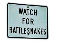 Passen Sie für das Klapperschlangen-Zeichen auf, das auf Weiß lokalisiert wird Stockfotografie