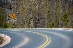 Passen Sie für Rotwild-Verkehrsschild auf Stockbild