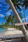 Passen Sie Kokosnuss auf Lizenzfreies Stockbild