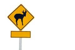 Passen Sie Rotwildüberfahrtzeichen auf Stockfoto