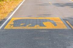 Passen Sie vom Warnzeichen des Elefanten auf Stockfotos