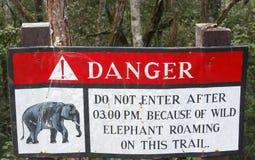 Passen Sie von den Elefanten auf Lizenzfreie Stockfotos