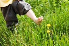 Passen van kind in de zomer Royalty-vrije Stock Afbeelding